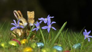 3840x2160 Wallpaper chocolate rabbits, easter, eggs, flowers, grass