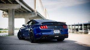 3840x2160 Wallpaper shelby mustang, mustang, car, muscle car, blue, back view