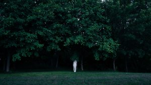 3840x2160 Wallpaper trees, person, contrast, green, white, hide
