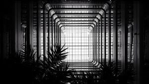 3840x2160 Wallpaper architecture, construction, bw, branches