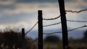 3840x2160 Wallpaper barbed wire, thorns, fence