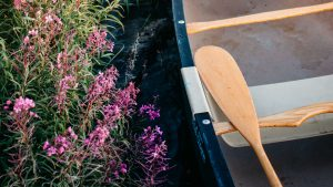 3840x2160 Wallpaper boat, paddle, coast, flowers, water