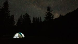 3840x2160 Wallpaper camping, tent, trees, spruce, starry sky, stars
