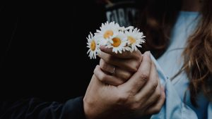 3840x2160 Wallpaper chamomile, flowers, hands, touch