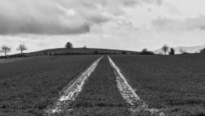 3840x2160 Wallpaper field, trace, stripes, black and white
