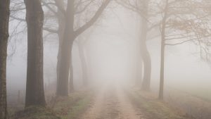3840x2160 Wallpaper road, fog, trees, branches, nature